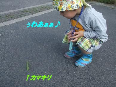 f0179203_8435881.jpg