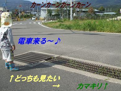 f0179203_844432.jpg