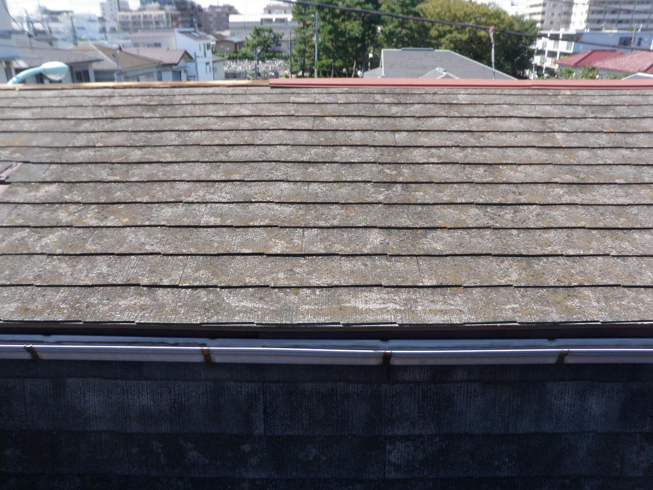 雨漏り修繕_e0215910_1813087.jpg