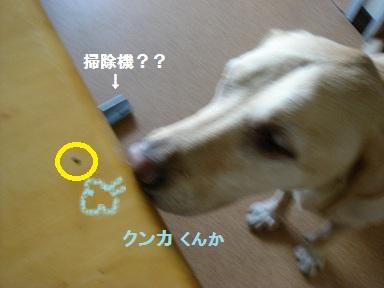 b0226221_1414782.jpg