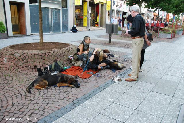 ドイツとの違い別バージョン_c0099133_14552098.jpg