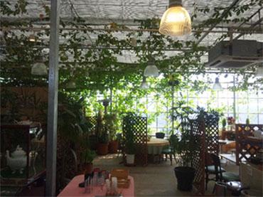 温室レストラン_d0245357_21135820.jpg