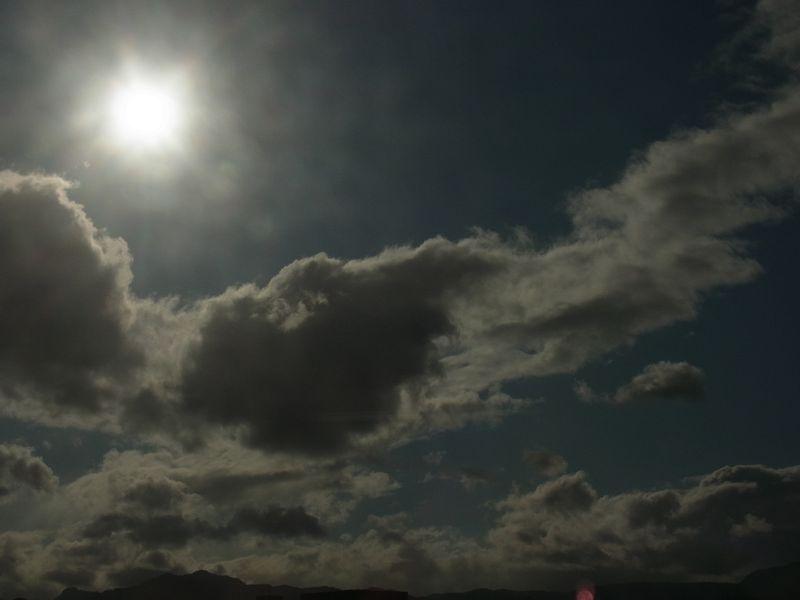 不安定な天気 博物館「チョウとガの世界」展明日まで_c0025115_1759583.jpg