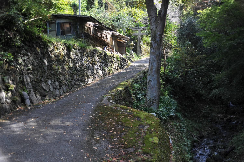 妙見山の麓(ふもと)を散歩_b0069128_1064711.jpg