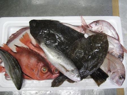 大東港より お魚が 到着しました。_c0206545_1264750.jpg