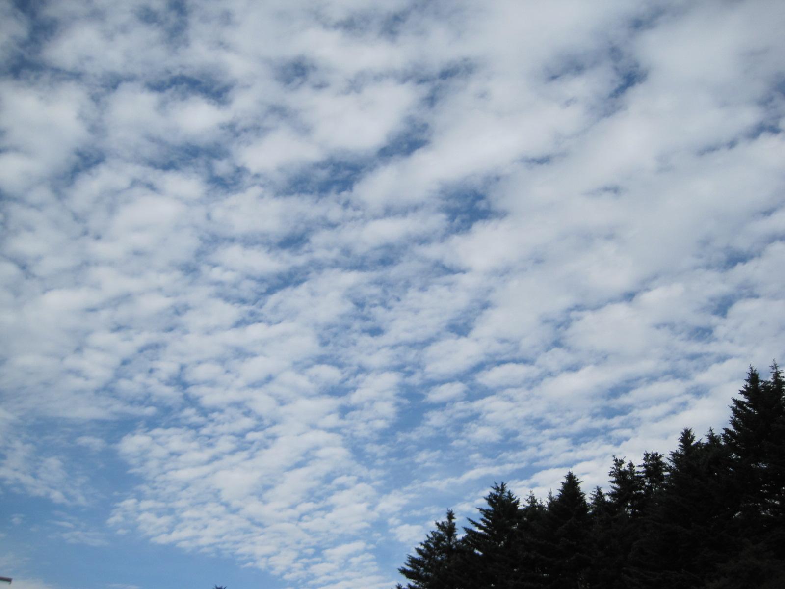 秋の空の下で_f0236260_18364182.jpg