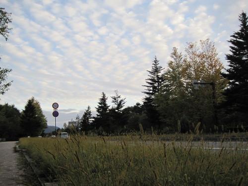 秋の空の下で_f0236260_2012404.jpg