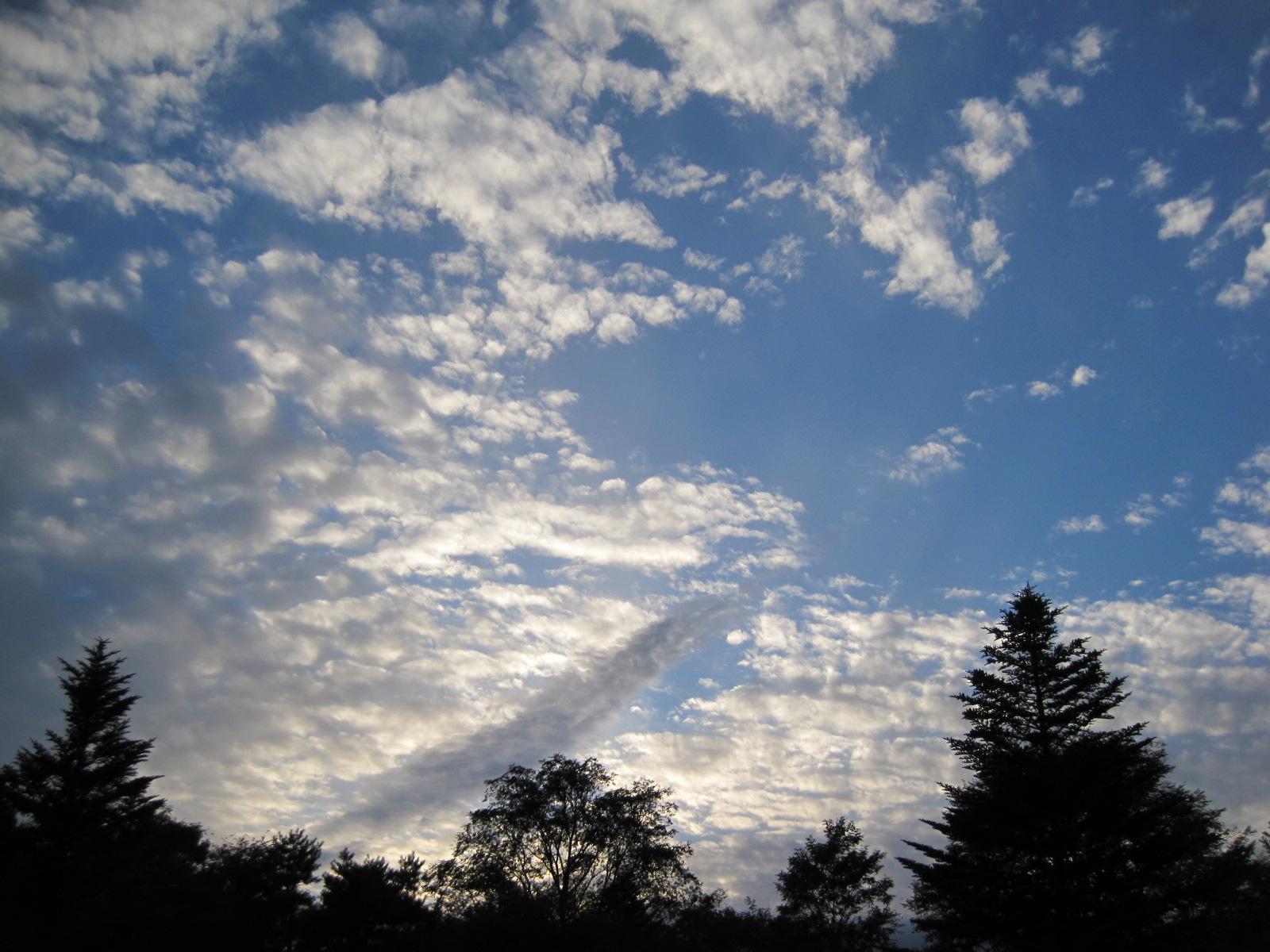 秋の空の下で_f0236260_22341182.jpg