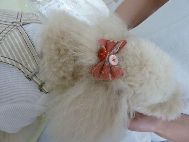 2011.10.1   ubu-buさんの服_a0083571_14361221.jpg