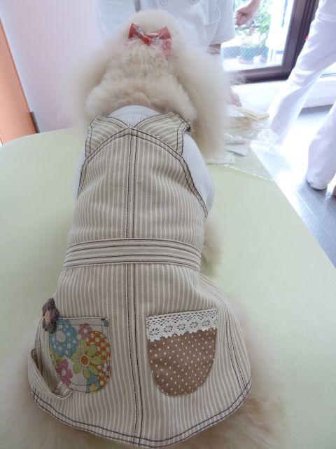 2011.10.1   ubu-buさんの服_a0083571_14405757.jpg