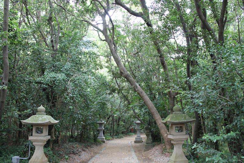 獅子岩から花乃窟神社へ(2011.8.24)_c0173978_1162418.jpg