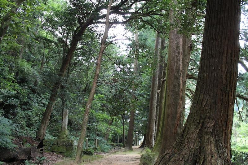 神内神社(2011.8.24)_c0173978_244225.jpg