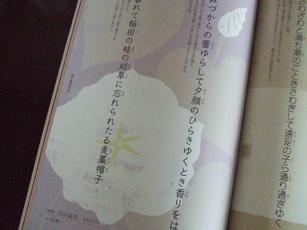 「Mahoroba」vol.6(その2)_e0182479_14444429.jpg