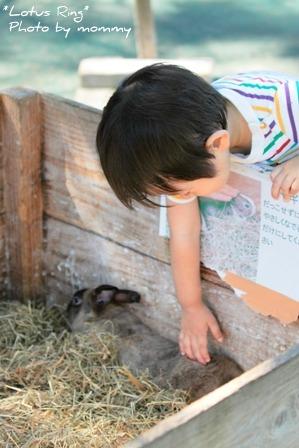 動物園_a0169912_15492610.jpg