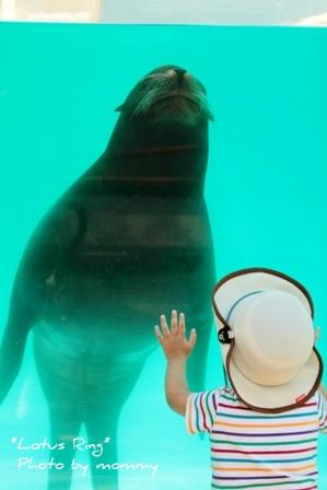 動物園_a0169912_15494955.jpg