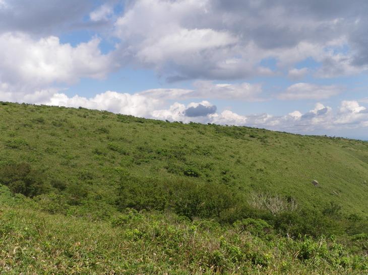 低山ハイク2_b0134026_1047543.jpg