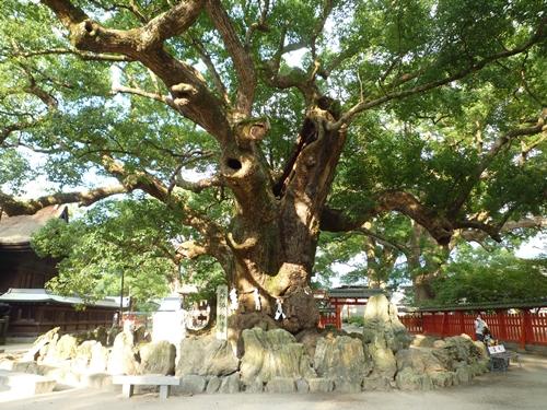 宇美八幡宮(3)応神天皇と竹内宿禰_c0222861_1454136.jpg