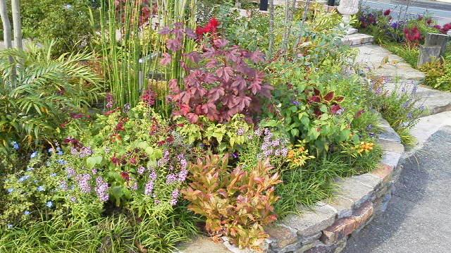 秋の植栽・・・_b0137969_9334837.jpg