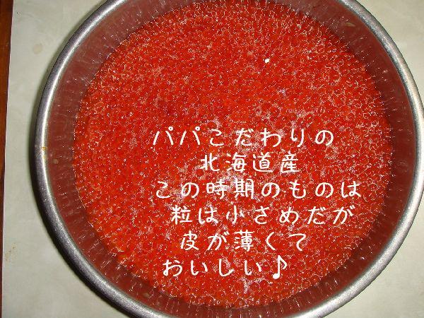 b0101991_1038958.jpg