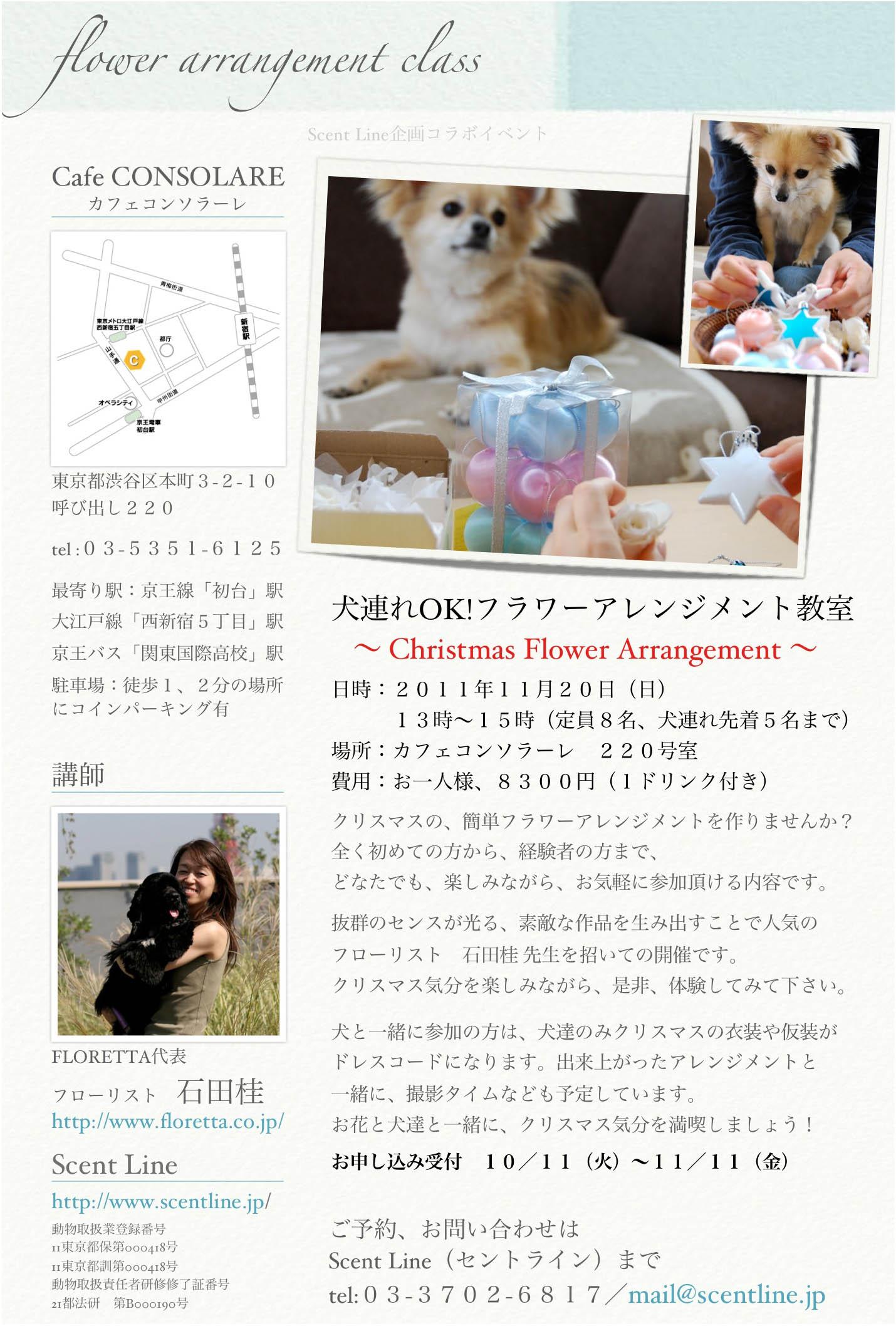 犬連れOK!クリスマスフラワーアレンジメント教室のお知らせ_c0099133_2093562.jpg
