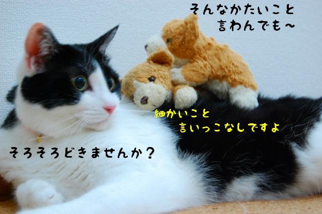 c0181639_08314.jpg