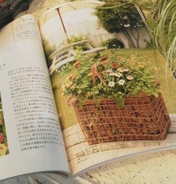 皆さん、この本、もう、手にとってごらんになりましたか・・・?_b0137969_18525185.jpg