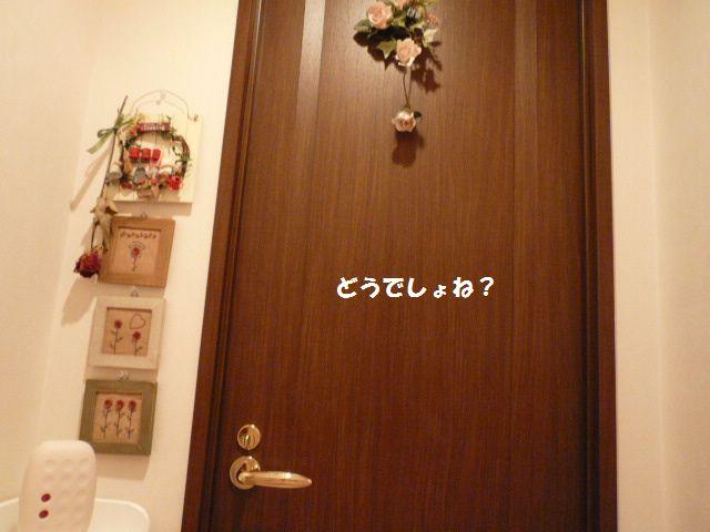 e0094407_2103232.jpg