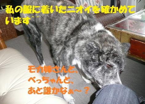 f0121712_1558141.jpg