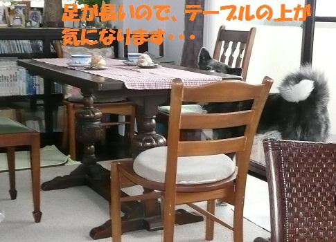 f0121712_155840100.jpg