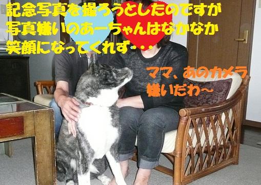 f0121712_15585732.jpg