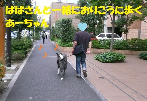 f0121712_1643430.jpg