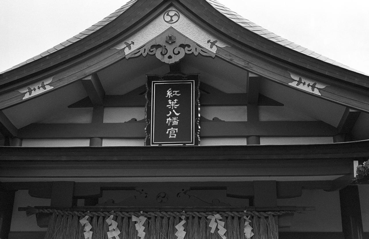 NIKON F3 MD-4 つけて紅葉八幡宮へ_b0125014_1352974.jpg