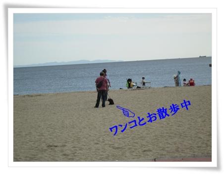 b0167519_9213646.jpg