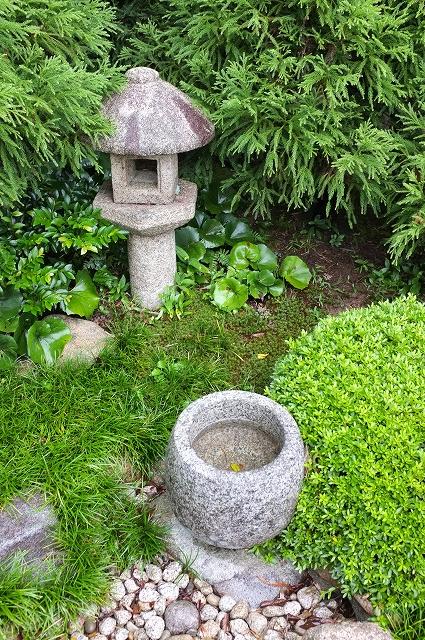 松江のお茶_f0050534_8163247.jpg