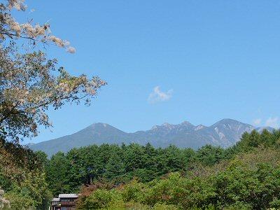 八ヶ岳薬用植物園_f0019247_23461216.jpg