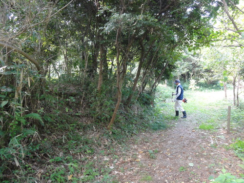 うみべの森を育てる会定例活動日:栗拾い_c0108460_17384841.jpg