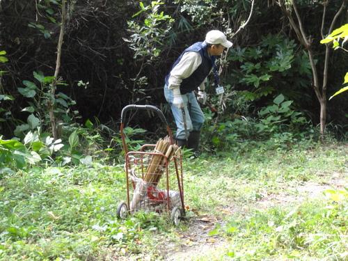 うみべの森を育てる会定例活動日:栗拾い_c0108460_17413246.jpg
