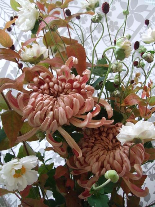 オークリーフ(紅葉と菊と秋明菊の花束)_f0049672_16572230.jpg