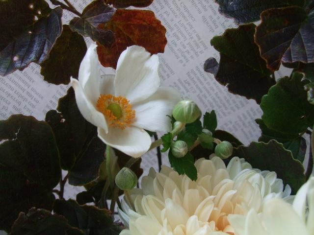 オークリーフ(紅葉と菊と秋明菊の花束)_f0049672_1721042.jpg