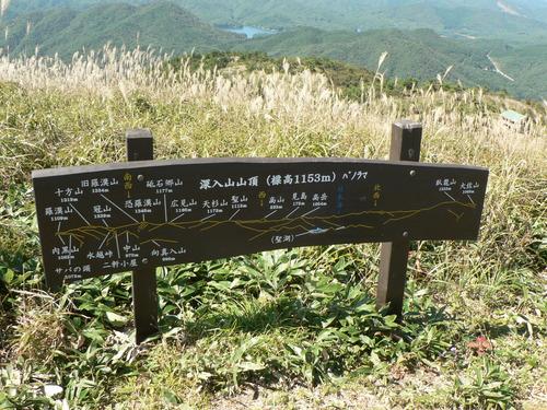 ムラサキセンブリ in 深入山_f0219710_828548.jpg