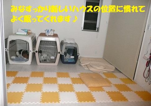 f0121712_042668.jpg