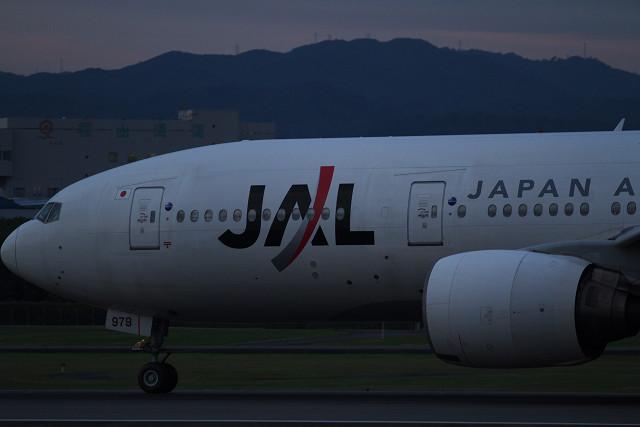 JALマイレージ!!_b0160331_1825063.jpg