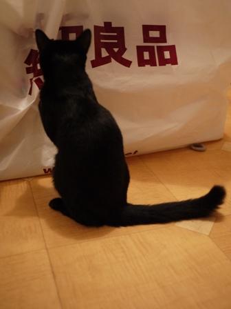 無印良品にタッチする猫 のぇるろった編。_a0143140_23581188.jpg