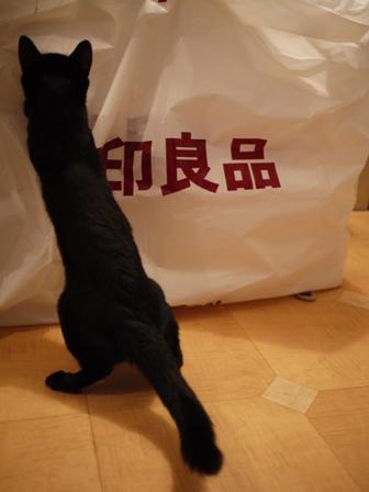 無印良品にタッチする猫 のぇるろった編。_a0143140_2359941.jpg