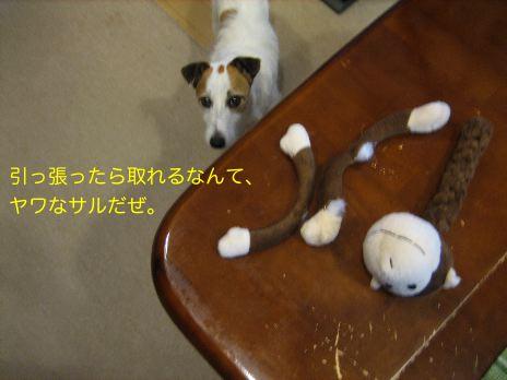 c0179472_1823613.jpg