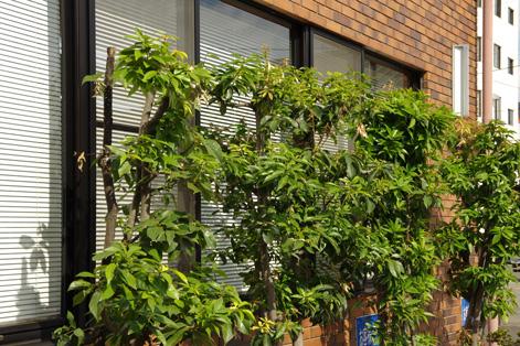 ecological office_d0095873_19355012.jpg