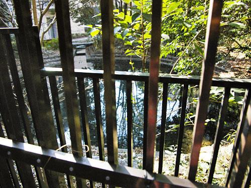 宇田川源流の湧水池_c0163001_23383027.jpg