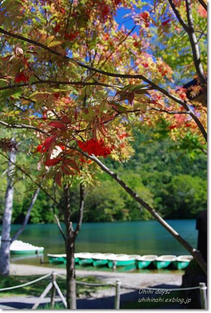 小さな秋を見つけに...日光 湯の湖・小田代ヶ原_f0179404_21383826.jpg