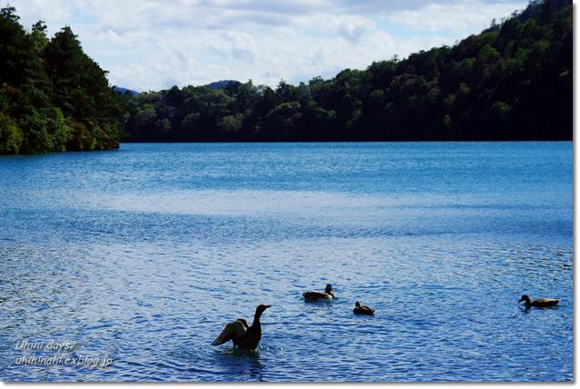 小さな秋を見つけに...日光 湯の湖・小田代ヶ原_f0179404_21385979.jpg