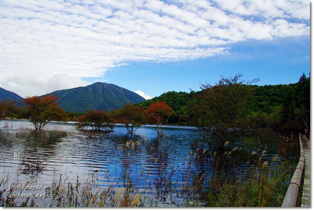 小さな秋を見つけに...日光 湯の湖・小田代ヶ原_f0179404_21402341.jpg